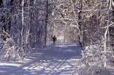 Suusamatkad Otepää looduspargis