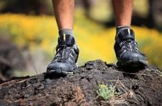 Jalgsimatk Otepää Pühajärve liikumis- ja matkaradadel